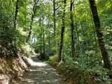 Tract 10 Kate Mountain Road - Photo 6
