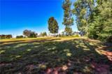 109 Magnolia Park Drive - Photo 9