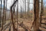 #19 Lot Tranquility Trail - Photo 2