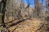 285 Bearwallow Trail - Photo 3