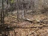 285 Bearwallow Trail - Photo 6