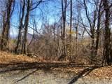 285 Bearwallow Trail - Photo 8