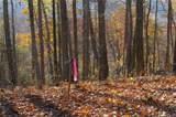 Lot 20 Locust Ridge - Photo 3