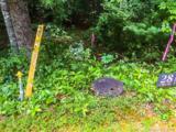 33 Jake Ridge Trail - Photo 12
