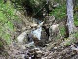 Lot 288 Winding Creek Drive - Photo 2