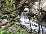 Lot 288 Winding Creek Drive - Photo 16