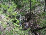 Lot 288 Winding Creek Drive - Photo 17