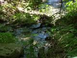 Lot 288 Winding Creek Drive - Photo 19