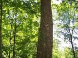 Lot 288 Winding Creek Drive - Photo 25