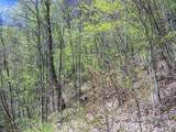 Lot 288 Winding Creek Drive - Photo 9