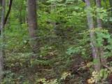 000 Whispering Woods Path - Photo 3