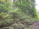 000 Whispering Woods Path - Photo 7