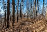 000 Winding Ridge Road - Photo 10