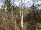 0000 Spring Cove Road - Photo 11