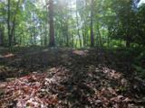 19 +/- Acres Royal Knoll Drive - Photo 10