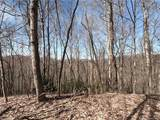 19 +/- Acres Homers Lane - Photo 1