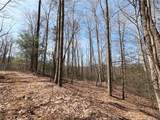 19 +/- Acres Homers Lane - Photo 11
