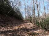 19 +/- Acres Homers Lane - Photo 12