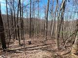 19 +/- Acres Homers Lane - Photo 10