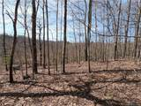 25 +/- Acres Homers Lane - Photo 1