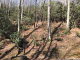 tbd Greybeard Trail - Photo 2