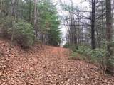 0000 Old Place Bluff Drive - Photo 5
