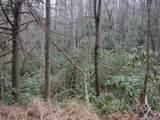 LOTS 6, 34, & 35 Timber Run Road - Photo 12