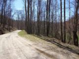 Lot 4 Liner Creek Road - Photo 2