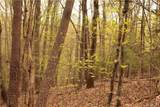 0 Leaf Point Drive - Photo 9