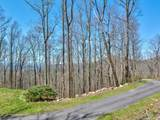 96 Castanea Mountain Drive - Photo 2