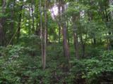 Lot 284 Running Deer Trail - Photo 19