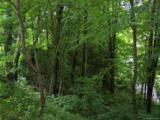 Lot 284 Running Deer Trail - Photo 20