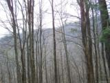 Lot 284 Running Deer Trail - Photo 21