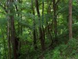 Lot 284 Running Deer Trail - Photo 22