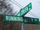 Lot 284 Running Deer Trail - Photo 27