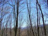 Lot 284 Running Deer Trail - Photo 3