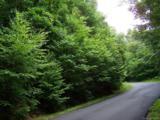 Lot 284 Running Deer Trail - Photo 30