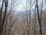 Lot 284 Running Deer Trail - Photo 4