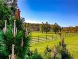 415 Brush Creek Road - Photo 9