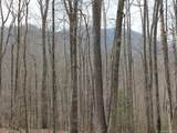 00 Wooded Valley Lane - Photo 2