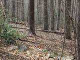 00 Wooded Valley Lane - Photo 3