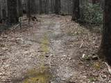 00 Wooded Valley Lane - Photo 8