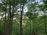 0000 Hawks Nest Trail - Photo 2
