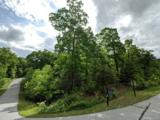 Lot #184 Catawba Falls Parkway - Photo 1