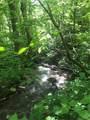 0000 Haney Creek Road - Photo 7