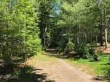 45 Jake Ridge Trail - Photo 11