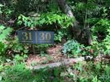 45 Jake Ridge Trail - Photo 8