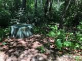 45 Jake Ridge Trail - Photo 9