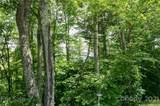 Lot 58 Mountain Air Drive - Photo 6