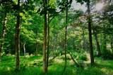 126 Powder Creek Trail - Photo 7